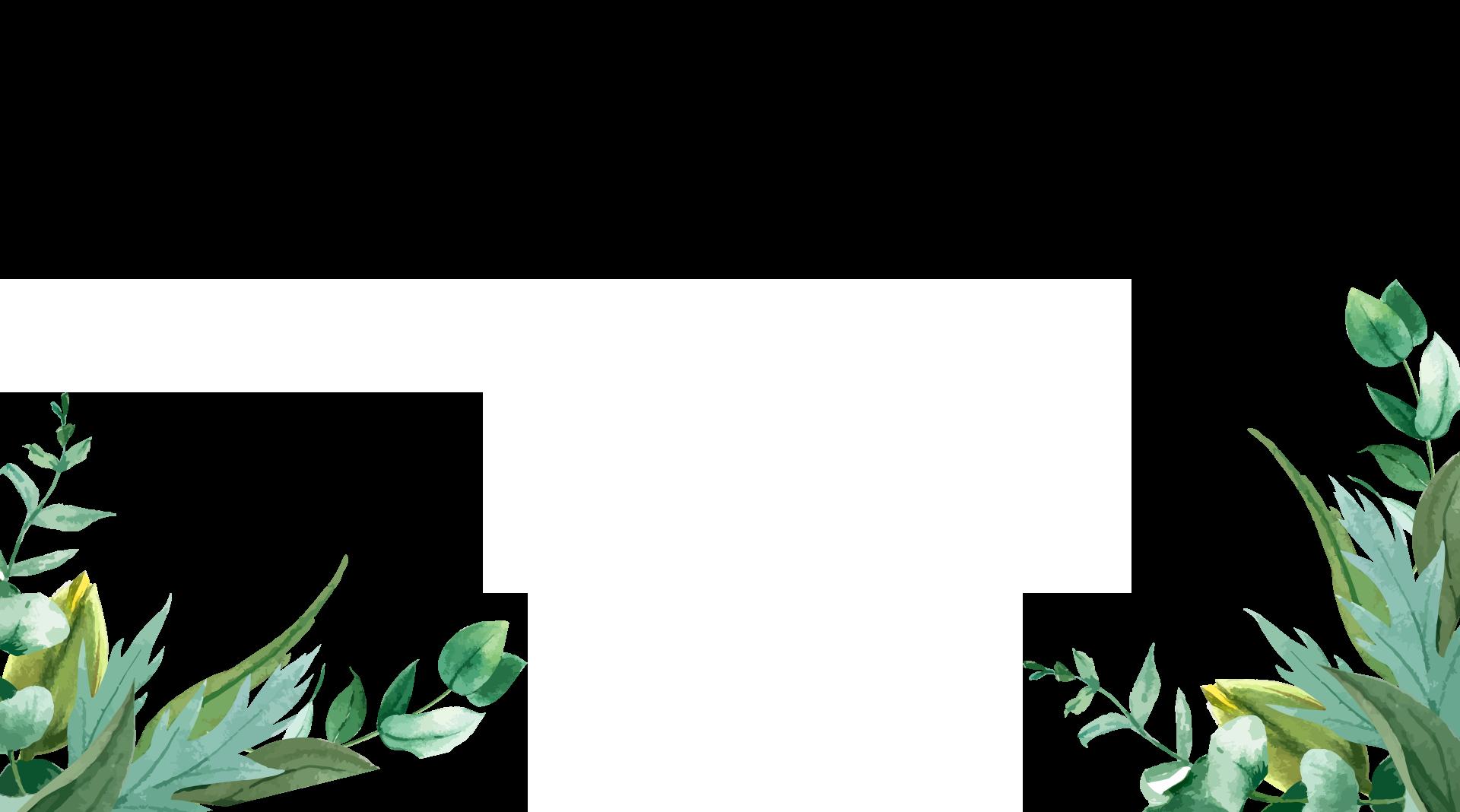 plantas río Arga